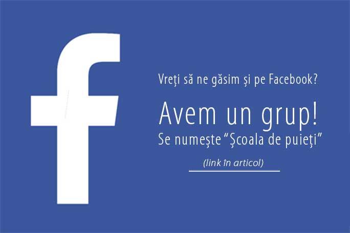 """Link la grupul de Facebook """"Școala de puieți"""""""