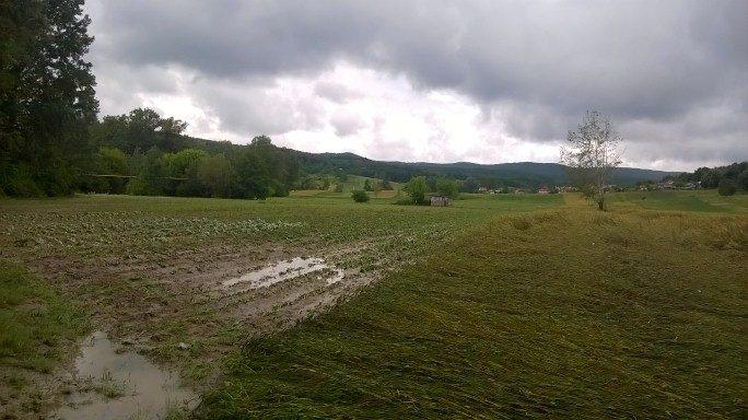 Gradina după inundație